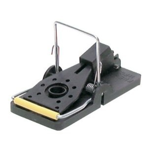 Snap-E Mouse Trap
